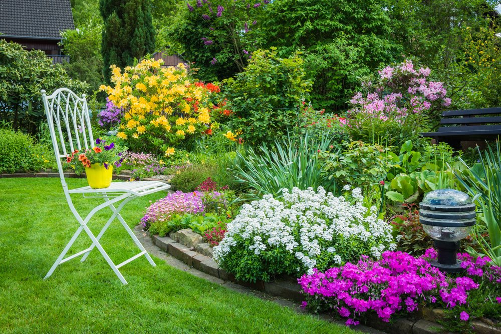 How to Choose what Flowers or Plants place in Your Yard